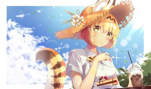 Rating: Safe Score: 37 Tags: animal_ears animal_ears_(artist) anthropomorphism blonde_hair blush cake catgirl clouds drink flowers food fruit hat kemono_friends serval short_hair sky strawberry tail User: BattlequeenYume