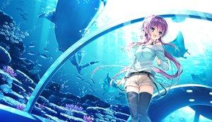 Rating: Safe Score: 143 Tags: animal ashishun fish game_cg kokonoka komagata_yuzuki primal_x_hearts sasorigatame tagme water User: opai