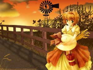Rating: Safe Score: 12 Tags: card_captor_sakura kinomoto_sakura windmill User: Oyashiro-sama