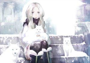 Rating: Safe Score: 34 Tags: animal blonde_hair blue_eyes fox hinoru_saikusa kolin long_hair stairs street_fighter_v winter User: BattlequeenYume