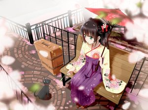 Rating: Safe Score: 168 Tags: animal black_hair blush cat gochou_(comedia80) green_eyes japanese_clothes kimono original petals umbrella User: RyuZU