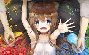Rating: Safe Score: 68 Tags: animal_ears bell blue_eyes blush brown_hair catgirl collar dress fang flowers loli long_hair male original psyche3313 User: SciFi
