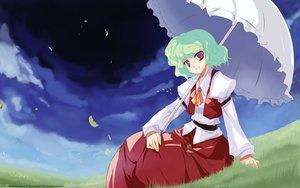 Rating: Safe Score: 10 Tags: dress grass green_hair kazami_yuuka red_eyes short_hair sky tokiame touhou umbrella vector User: 秀悟
