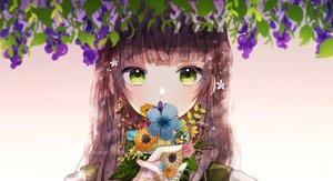Rating: Safe Score: 60 Tags: brown_hair close flowers gradient green_eyes long_hair mame_kuri original watermark User: mattiasc02