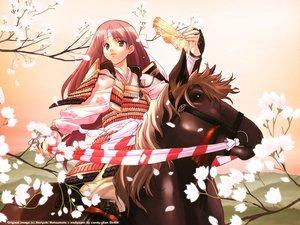 Rating: Safe Score: 6 Tags: animal armor brown_eyes brown_hair fan flowers headband horse japanese_clothes long_hair matsumoto_noriyuki petals watermark User: 秀悟