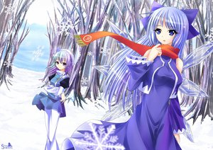 Rating: Safe Score: 57 Tags: 2girls blue_eyes blue_hair cirno dress fairy green_hair letty_whiterock long_hair purple_eyes purple_hair ribbons scarf short_hair skirt snow touhou wings winter User: Tensa