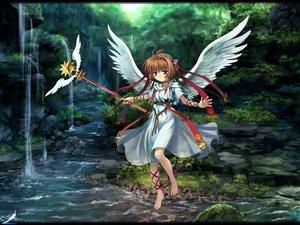 Rating: Safe Score: 51 Tags: card_captor_sakura kinomoto_sakura wings User: Oyashiro-sama