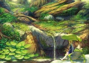 Rating: Safe Score: 139 Tags: animal barefoot benitama blonde_hair forest frog grass hat landscape leaves moriya_suwako scenic skirt touhou tree water waterfall User: FormX