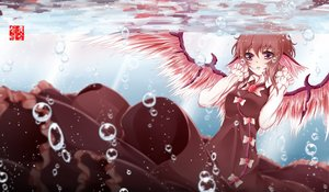 Rating: Safe Score: 60 Tags: brown_hair bubbles dusk/dawn mystia_lorelei red_eyes touhou underwater water wings User: FormX