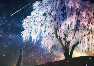 Rating: Safe Score: 74 Tags: aliasing cherry_blossoms flowers kupe original scenic short_hair sky stars tree User: RyuZU