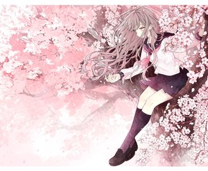 Rating: Safe Score: 44 Tags: akakura brown_hair cherry_blossoms flowers kneehighs long_hair original petals pink_eyes school_uniform tree User: FormX