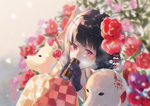Rating: Safe Score: 67 Tags: animal black_hair close dog drink flowers gloves japanese_clothes kimono long_hair original pink_eyes rose tagme_(artist) User: BattlequeenYume