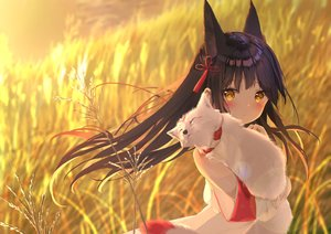 Rating: Safe Score: 32 Tags: animal animal_ears anthropomorphism azur_lane blush brown_hair daitai_sotogawa_(futomomo) fox foxgirl japanese_clothes long_hair miko nagato_(azur_lane) yellow_eyes User: otaku_emmy