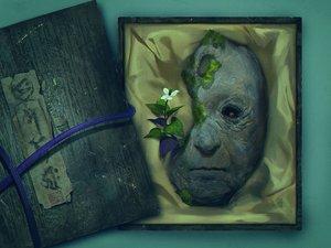 Rating: Safe Score: 58 Tags: flowers jpeg_artifacts mask ofuda original realistic tomono_rui translation_request User: otaku_emmy