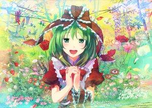 Rating: Safe Score: 32 Tags: flowers green_eyes green_hair kagiyama_hina ribbons takuzui touhou User: HawthorneKitty