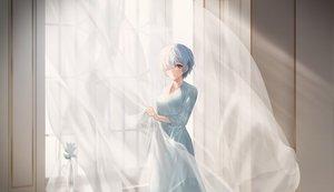 Rating: Safe Score: 42 Tags: blue_eyes blue_hair dress flowers rem_(re:zero) re:zero_kara_hajimeru_isekai_seikatsu short_hair sowb User: Dreista