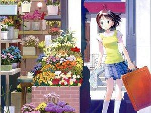 Rating: Safe Score: 4 Tags: flowers mahou_tsukai_ni_taisetsu_na_koto somedays_dreamers yoshizuki_kumichi User: Oyashiro-sama