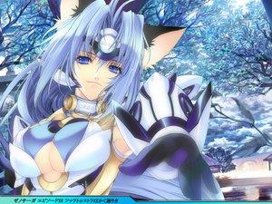 Rating: Safe Score: 47 Tags: animal_ears blue_hair catgirl creayus kos-mos xenosaga User: Tensa