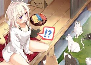 Rating: Safe Score: 193 Tags: animal blush cat dog food long_hair original purple_eyes rabbit sasahara_wakaba turtle white_hair User: Flandre93