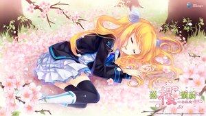 Rating: Safe Score: 74 Tags: aizawa_hikaru aliasing flowers microsoft os-tan petals seifuku shinia sleeping thighhighs User: Wiresetc