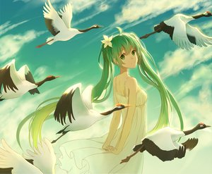 Rating: Safe Score: 73 Tags: animal bird clouds green_eyes green_hair hatsune_miku lan_jue long_hair sky summer_dress twintails vocaloid User: humanpinka