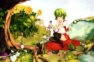 Rating: Safe Score: 89 Tags: flowers green_hair kazami_yuuka polskash red_eyes short_hair sunflower touhou water User: Han-ul