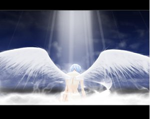 Rating: Safe Score: 5 Tags: ayanami_rei neon_genesis_evangelion wings User: Oyashiro-sama