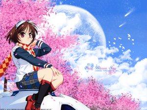 Rating: Safe Score: 6 Tags: cherry_blossoms flowers minakami_rinrin scarf sister_princess skirt tenhiro_naoto User: Oyashiro-sama