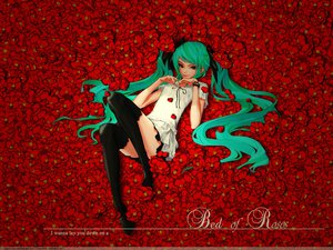 Rating: Safe Score: 44 Tags: flowers hatsune_miku redjuice rose signed supercell thighhighs vocaloid watermark world_is_mine_(vocaloid) User: 秀悟