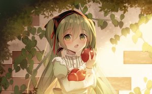 Rating: Safe Score: 41 Tags: apple blush fang food fruit green_eyes green_hair hatsune_miku headdress lolita_fashion long_hair sakakidani twintails vocaloid User: mattiasc02