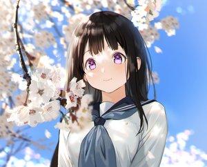 Rating: Safe Score: 107 Tags: black_hair blush cherry_blossoms chitanda_eru close cropped flowers hyouka long_hair mery_(apfl0515) purple_eyes school_uniform sky spring User: otaku_emmy