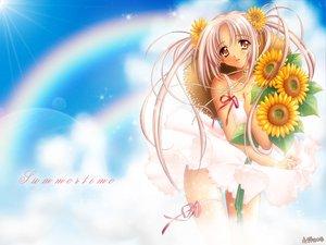 Rating: Safe Score: 4 Tags: carnelian flowers rainbow sunflower User: Oyashiro-sama