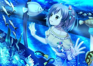 Rating: Safe Score: 126 Tags: 33paradox animal blue bubbles fish original polychromatic shorts twintails underwater water wristwear yellow_eyes User: humanpinka
