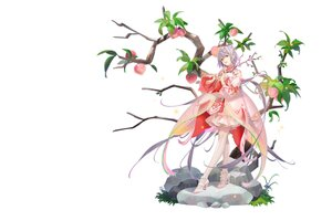 Rating: Safe Score: 51 Tags: bloomers chinese_clothes dress flowers food fruit grass green_eyes lolita_fashion long_hair luo_tianyi pantyhose purple_hair see_through tidsean tree vocaloid vsinger white User: otaku_emmy