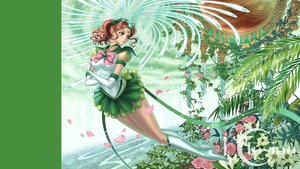 Rating: Safe Score: 38 Tags: boots brown_hair eclosion elbow_gloves gloves green green_eyes kino_makoto leaves petals ponytail sailor_jupiter sailor_moon User: FormX