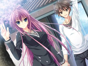 Rating: Safe Score: 55 Tags: dress feng game_cg green_eyes hoshizora_e_kakaru_hashi naturalton necklace petals purple_hair sakai_hina User: Wiresetc