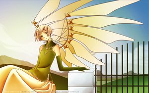 Rating: Safe Score: 12 Tags: brown_hair clamp clouds clover dress elbow_gloves gloves green_eyes sky sue_(clover) wings User: Maboroshi