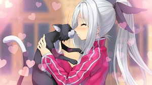 Rating: Safe Score: 65 Tags: animal blush cat game_cg gray_hair long_hair mibu_tsubaki tokeijikake_no_ley_line urabi_(tomatohouse) User: Maboroshi