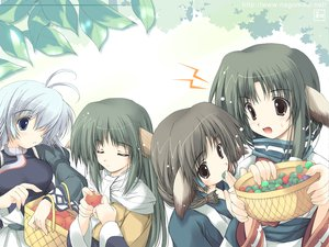 Rating: Safe Score: 21 Tags: animal_ears aruruw brown_eyes eruruw kamyu tenmu_shinryuusai utawarerumono yuzuha User: 秀悟
