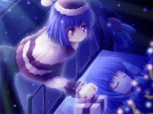 Rating: Safe Score: 33 Tags: akashio blue_hair blush christmas hat hinanawi_tenshi long_hair nagae_iku night purple_eyes purple_hair short_hair sleeping touhou User: Tensa