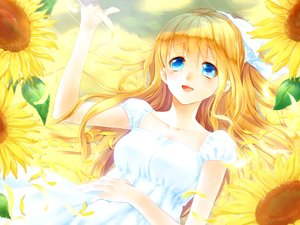 Rating: Safe Score: 69 Tags: air blonde_hair blue_eyes dress flowers kamio_misuzu long_hair mada_(mk333) petals ponytail ribbons sunflower User: C4R10Z123GT