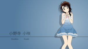 Rating: Safe Score: 47 Tags: dress gradient nisekoi onodera_kosaki vector User: RyuZU
