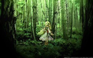 Rating: Safe Score: 19 Tags: children_of_mana signed tnt watermark User: 秀悟