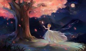 Rating: Safe Score: 59 Tags: barefoot brown_hair cherry_blossoms dress duximeng flowers moon night petals sakura_(tsubasa) short_hair tree tsubasa_reservoir_chronicle User: gnarf1975
