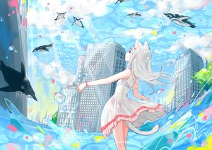Rating: Safe Score: 45 Tags: animal animal_ears bubbles building catgirl city clouds dress gray_hair long_hair original penguin sky summer_dress tail water yutukicom User: RyuZU