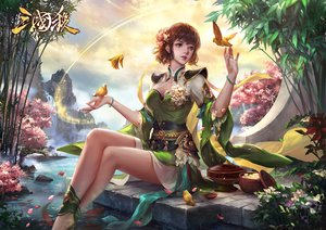 Rating: Safe Score: 40 Tags: animal bird breasts brown_hair cdash817 cherry_blossoms cleavage clouds drink flowers logo petals realistic sake short_hair sky tagme_(character) water waterfall User: RyuZU