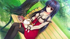 Rating: Safe Score: 167 Tags: animal asami_asami black_hair book cat dress game_cg grass headband hibiki_works himekawa_honami long_hair pantyhose park pretty_x_cation_2 red_eyes tree User: yukinorakuen