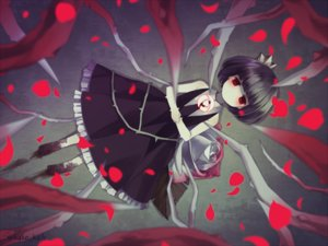 Rating: Safe Score: 0 Tags: barefoot black_hair crown flowers gothic kake_(kuromitsu) petals red_eyes rose rose_(character) rose_to_tasogare_no_kojou short_hair tie watermark User: otaku_emmy