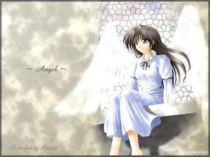 Rating: Safe Score: 6 Tags: r tagme wings User: Oyashiro-sama