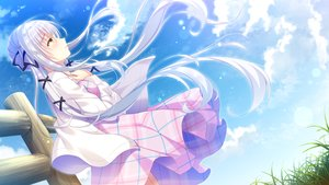 Rating: Safe Score: 79 Tags: clouds dress game_cg koneko_neko_neko long_hair nekokawa_shirone noda_shuha sky skyfish twintails white_hair User: C4R10Z123GT